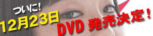 DVD発売バナー.jpg